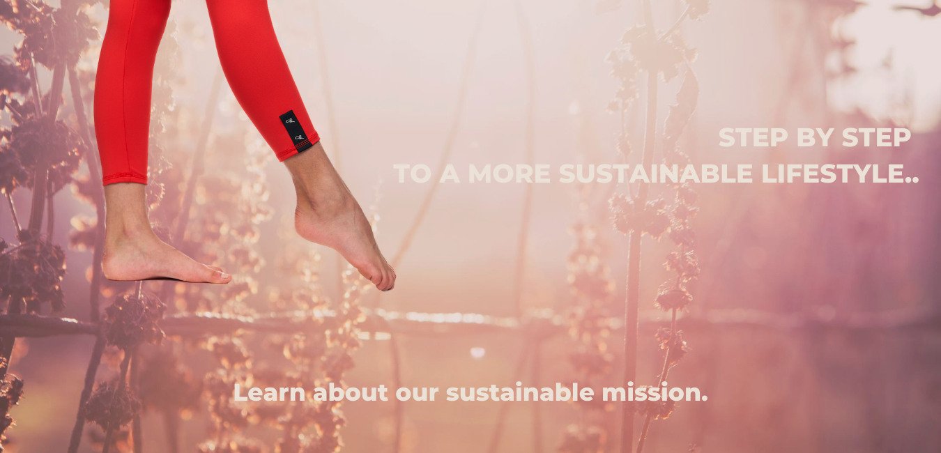 jiv sustainable
